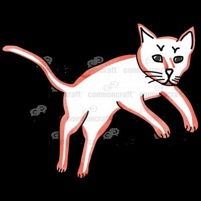 Cat Orange Jump