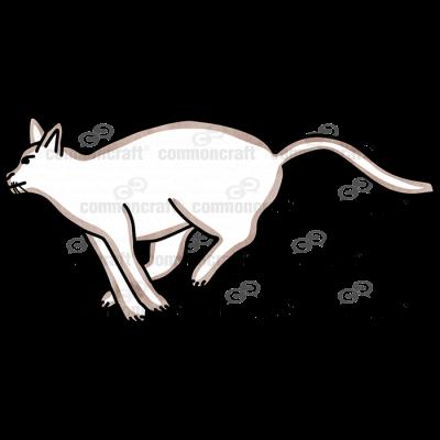 Cat Running Brown