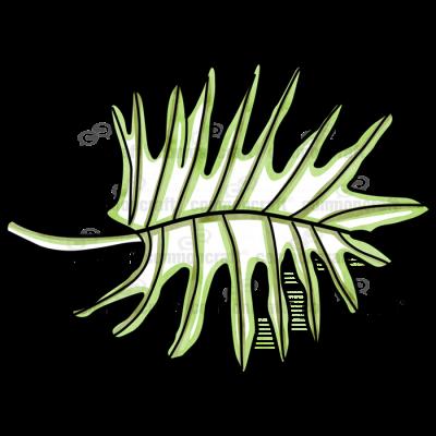 Jungle Leaf 2