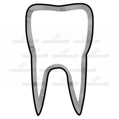 Tooth Single