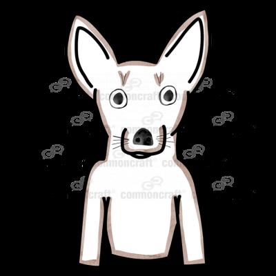 Dog Chihuahua Small