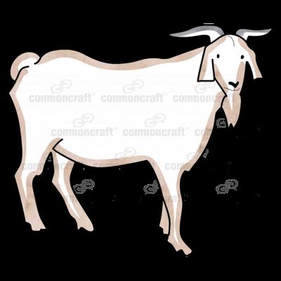 Goat Horns Beard
