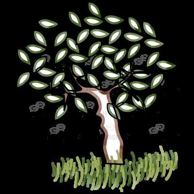Green Tree Little