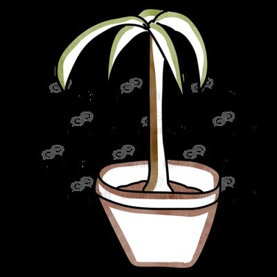 Plant Pot 3
