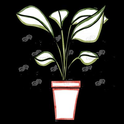 Plant Pot 5