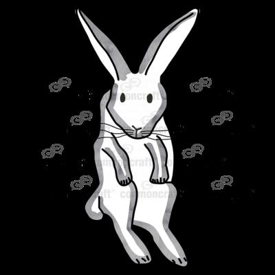 Rabbit Bunny Held