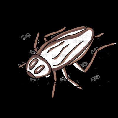 Roach Top