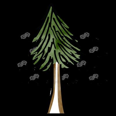 Tree Standing